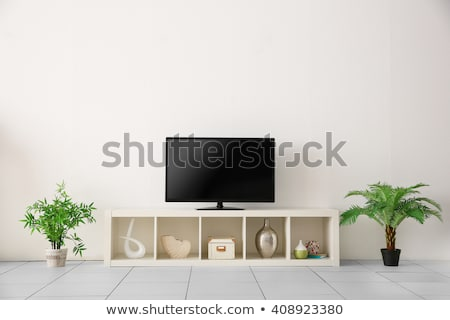modern tv set with blank screen stock photo © make