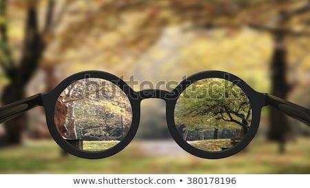 Diagnosis - Presbyopia. Medical Concept. Stock photo © tashatuvango