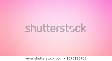 Pink Background With Bow Stock photo © barbaliss
