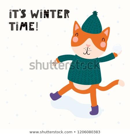 少年 雪玉 雪 冬 エネルギー ストックフォト © IS2