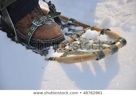Sétál hó tél kint sport természet Stock fotó © FER737NG