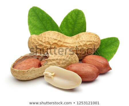 Stock photo: Peanuts with Nutshell