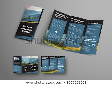 blue geometric abstract triple fold brochure design template Stock photo © SArts