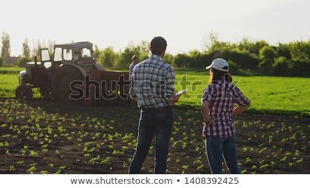 Kadın çiftçi bakıyor güneş ufuk ekili Stok fotoğraf © stevanovicigor