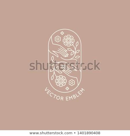 star touch logo stock photo © meisuseno