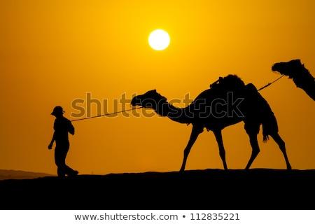 Sivatag jelenet arab emberek tevék illusztráció Stock fotó © bluering