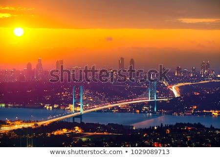 istanbul bosporus bridge stock photo © givaga
