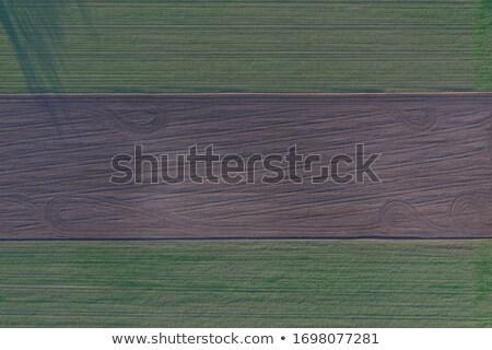 légifelvétel · vidéki · mező · traktor · mezőgazdasági · munka - stock fotó © artjazz
