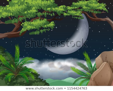Cresent moon over jungle Stock photo © bluering