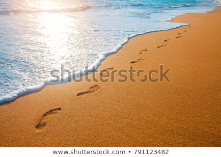 beach footsteps Stock photo © hlehnerer