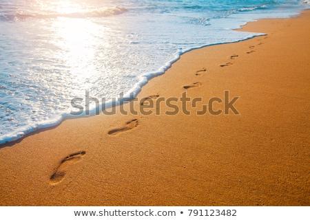 beach footsteps stock photo © hlehnerer