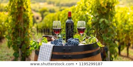 Foto stock: Vinho · tinto · vidro · barril · ao · ar · livre