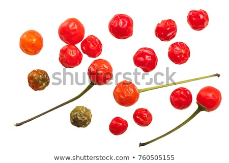 Dried Chiltepin peppers, top, paths Stock photo © maxsol7