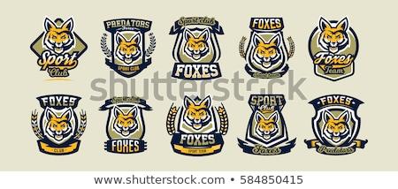 Przyrody baseball maskotka kolekcja ikona ilustracja Zdjęcia stock © patrimonio
