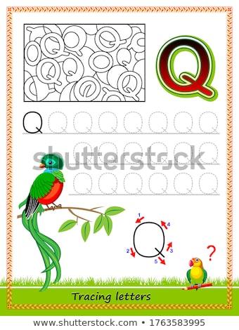 alfabeto · menina · crianças · estudante · arte - foto stock © izakowski
