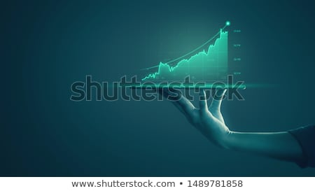 Strategy and monitoring  of gains in financial market Stock photo © cifotart