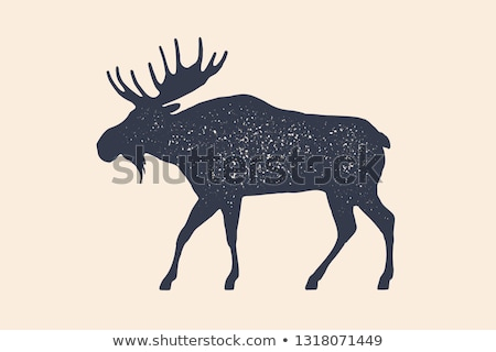 Moose, wild deer. Concept design of farm animals Stock photo © FoxysGraphic