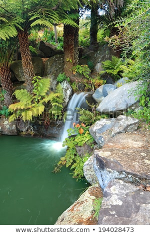 Bushland waterfall in Australia Stock photo © lovleah