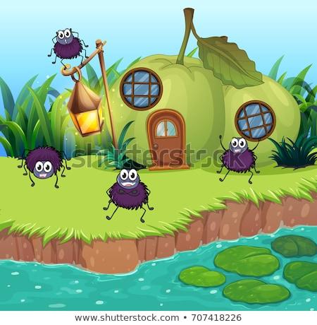 Pókok élet ház illusztráció természet tájkép Stock fotó © colematt