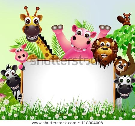 Scimmie cartoon gruppo illustrazione divertente Foto d'archivio © izakowski