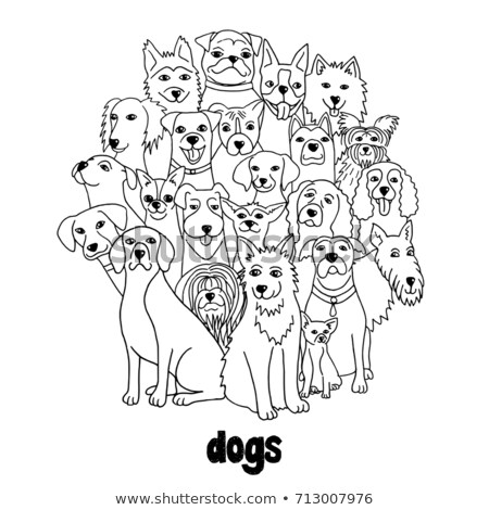 differences color book with dogs group Stock photo © izakowski