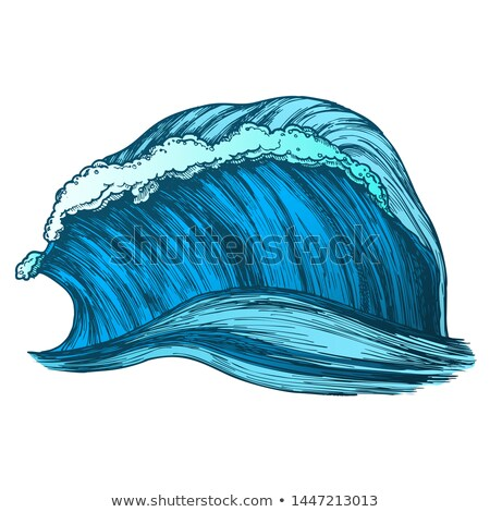 Color Rushing Wind Tropical Ocean Marine Wave Vector Stock photo © pikepicture