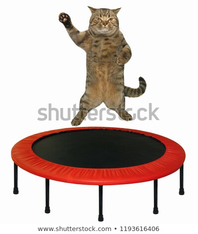 Gymnatist on trampoline white background Stock photo © bluering