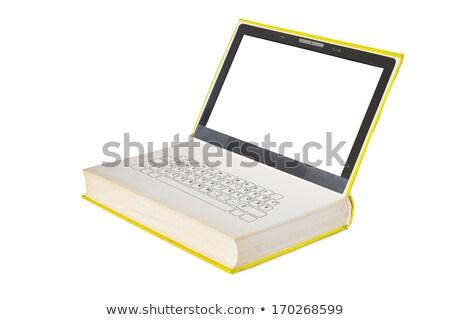 キーボード マウス 電子ブック 書く コンピュータのキーボード ストックフォト © lichtmeister