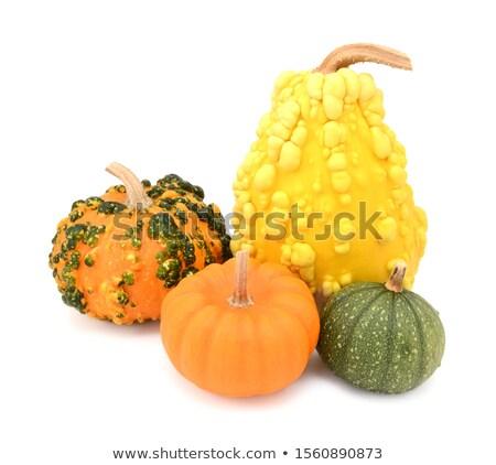 Grupy pięć dekoracyjny pomarańczowy żółty zielone Zdjęcia stock © sarahdoow