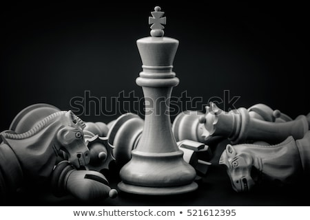 King And Queen Wooden Chess Pieces Stock photo © AndreyPopov