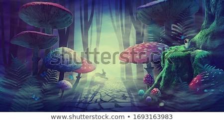 Orman manzara eğreltiotu güneş yaprak ağaçlar Stok fotoğraf © ivonnewierink