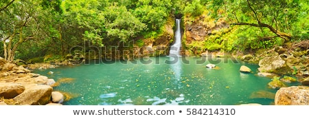 Chamouze Waterfall In Chamarel, Mauritius  Stock photo © AndreyPopov