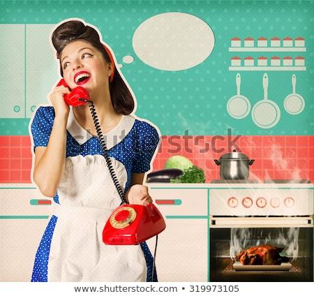 cocina · estufa · vintage · aluminio · otro - foto stock © tobkatrina