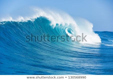 Summer tropical sea with waves and blue sky Stock photo © karandaev