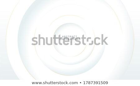 Abstrakten grau Stil Schichten Design Business Stock foto © SArts