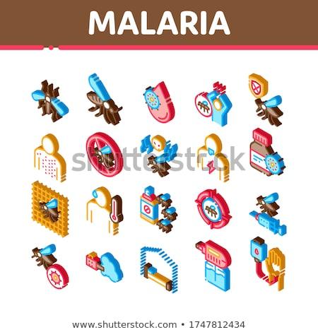 Malaria Illness Dengue Isometric Icons Set Vector Stock photo © pikepicture