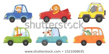 Desenho Animado Carros Ilustracao Estrada Verde