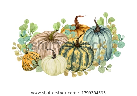 Fall harvest stock photo © Zela