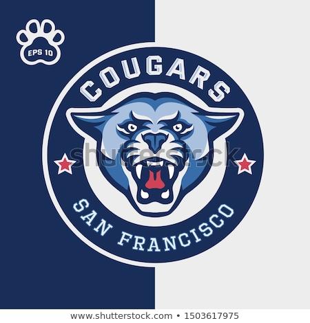 Stock foto: Cougar Panther Mascot Head Vector Cartoon