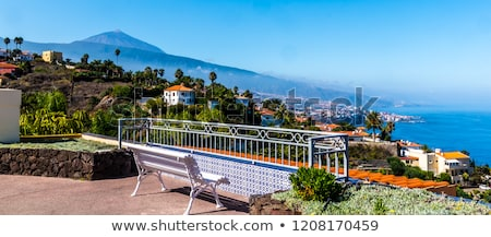 Puerto de la Cruz at sunset, Tenerife, Spain Stock photo © neirfy