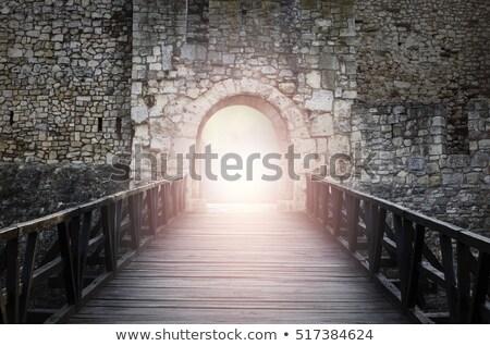 古い 城 戸口 木製 家 建物 ストックフォト © Rebirth3d