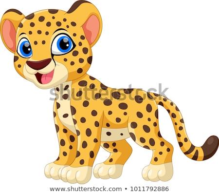 Gepárd rajz boldog macska szín vicces Stock fotó © dagadu