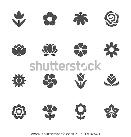 Colorful flower icons vector set. Stock photo © Sylverarts