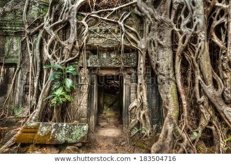 Templom porta Thaiföld épület fal építészet Stock fotó © Witthaya