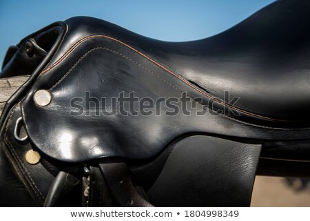 Side view of black leather saddle Stock photo © Rybakov