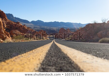 Barren Highway Stock photo © zzve