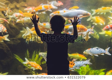 Silhouettes of children in the aquarium stock photo © g215