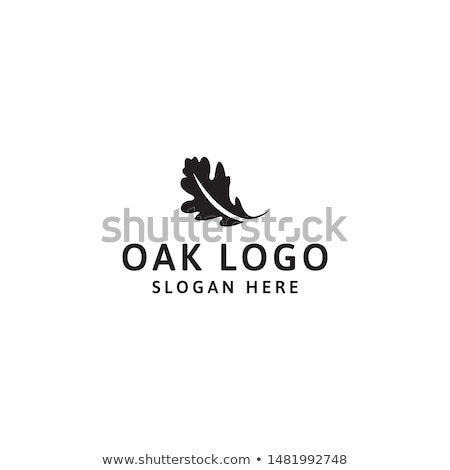 オーク 葉 森林 自然 シルエット 支店 ストックフォト © Alegria111