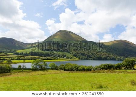 Groene heuvels Blauw rivier illustratie geïsoleerd Stockfoto © cidepix