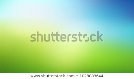Yeşil sarı güneşli mavi gökyüzü doğa Stok fotoğraf © impresja26